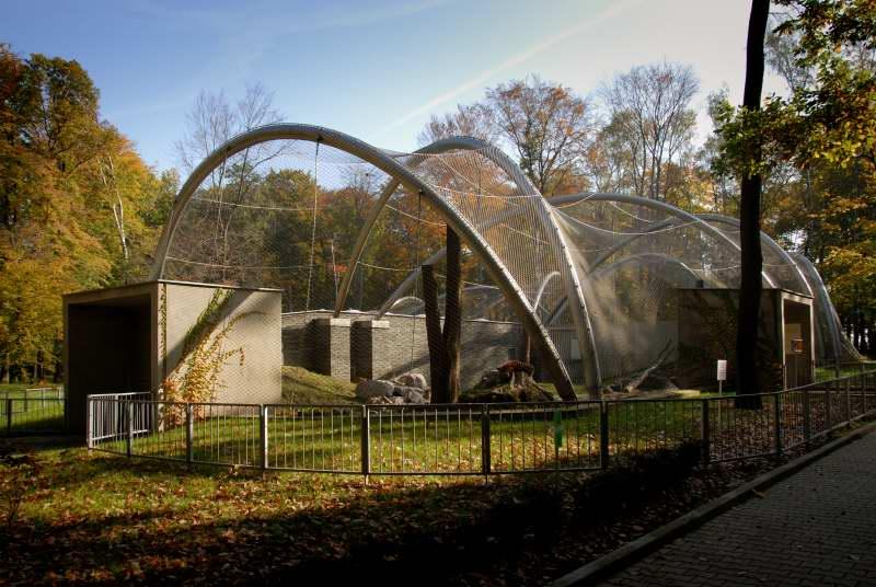 Wybieg dla dużych kotów w krakowskim Ogrodzie Zoologicznym